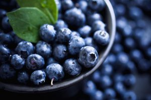 blueberry benefits in dental care