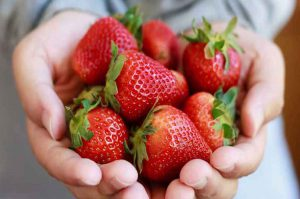 strawberries-